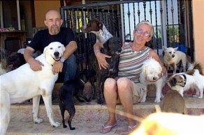 Tierauffangstation Finca Lucendum benötigt dringend Hilfe!!!
