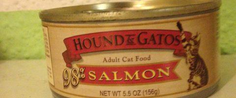 Katzenfutter Test - Hound & Gatos