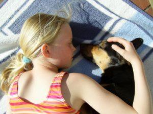 Hunde und Kleinkinder
