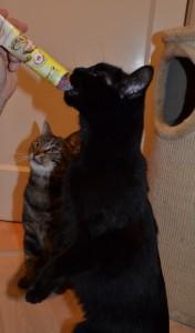 Lina und Felix