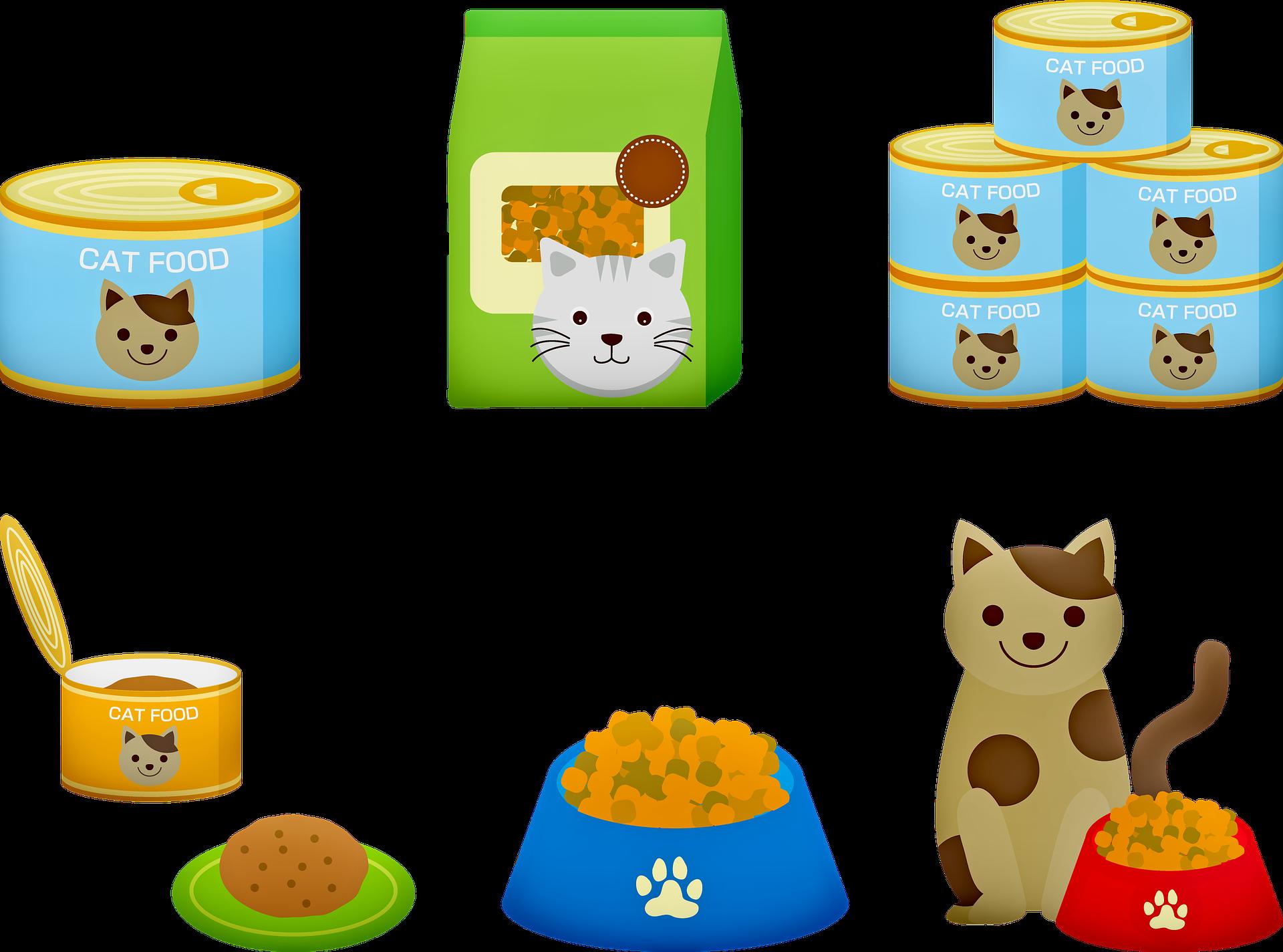 Katzenfutter test 2019
